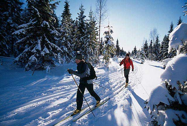 Paust-cross-country-ski.jpg