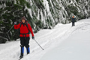 An image of two people snow shoeing down a path.