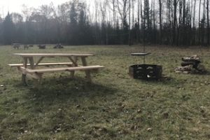 An image of a picnic area, with a bench and fire pit.