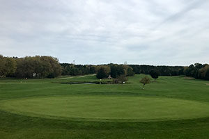 An image of the green on a golf course.