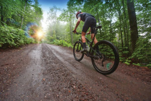 An image of a man riding a mountain bike down a trail through the trees.