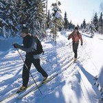 A picture of two people snow-shoeing.