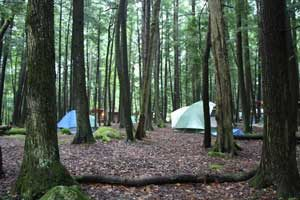 Photo of tents in woods near Crivitz, WI