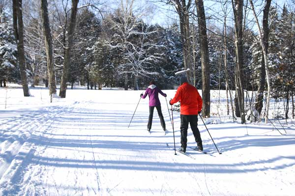 An image of 2 people snow skiing down a path.