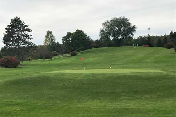 An image of a golf hole on the green.