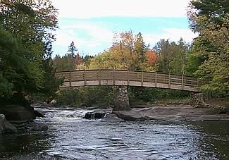 An image of a bridge over a river, with trees all around.