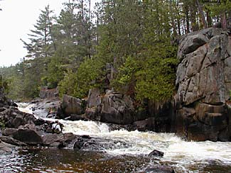 An image of a river rushing passed a rock wall with trees.