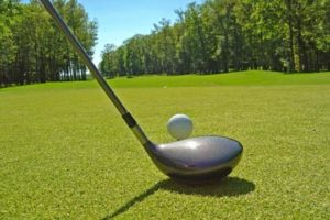 An image of a golf club next to a golf ball on the green in front of trees.