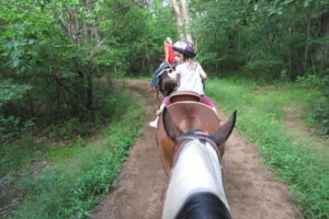 A picture taken or a girl on a horse in front of a rider following on a horse down a trail in the trees.