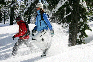 An image of two people kicking up snow with snow shoes.