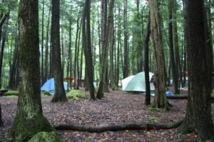 An image of tents in the woods.